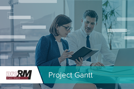 Project Gantt: Multi-Projektmanagement in Microsoft Dynamics 365